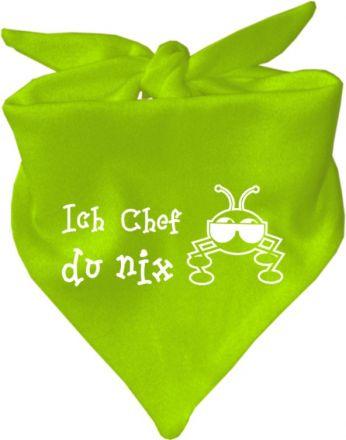 Baby Halstuch mit Druck Ich Chef du nix / AUNTI